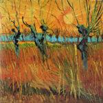 102314 - Vincent  Van Gogh, Saules tetards au coucher du soleil, 1888