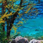 104108 Efterår ved sø