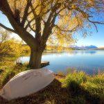 104118 Bjergsø New Zealand