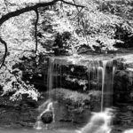 104123 - Vandfald i skov