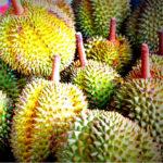 108103 Exotiske frugter