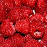 108109 Hindbær