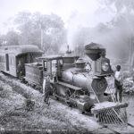 106125 Tog Florida 1890erne