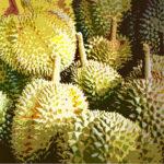 108106 Exotiske frugter