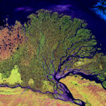 101520 The Lena River Delta Reserve, Russia by NASA.USGS